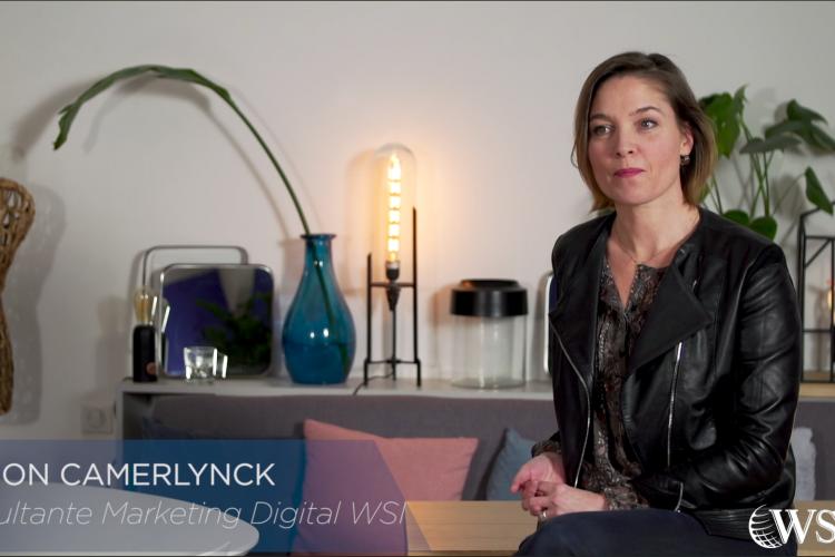Audit Webmarketing - Vidéo WSI 2019